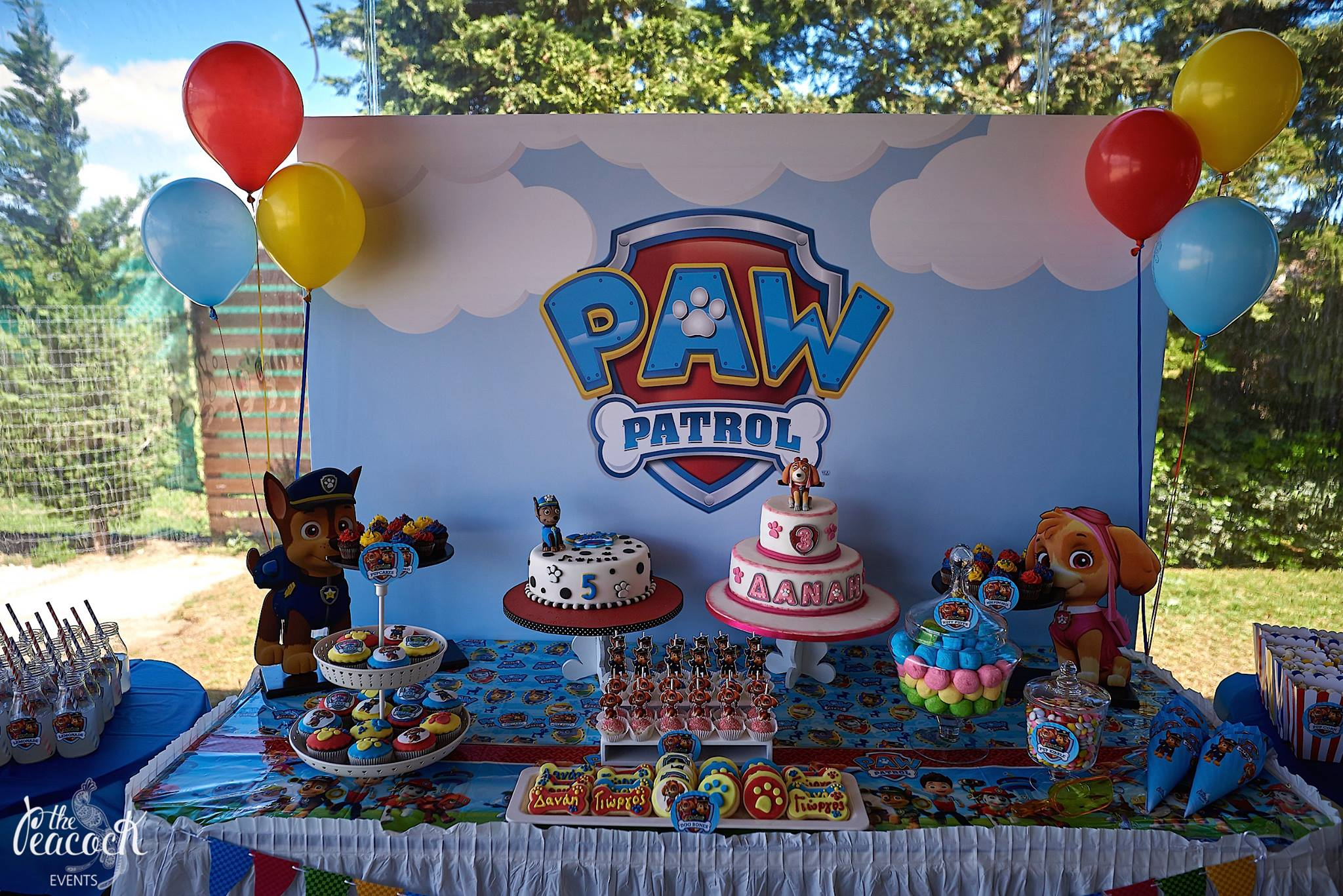 George S 5th Amp Danae S 3rd Birthday Party Paw Patrol The